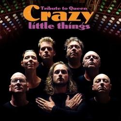 crazy little things queen tribute boeken