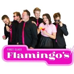 First-Class-Flamingos-boeken