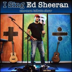 i sing ed sheeran boeken