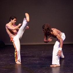 capoeira braziliaanse vechtdans boeken